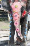 被绘的大象在飞溅节日的水中在泰国 库存图片