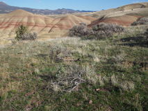 被绘的小山环境 免版税库存照片