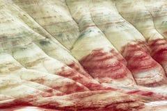 被绘的小山约翰迪化石床 免版税库存图片