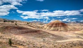 被绘的小山,约翰迪化石床俄勒冈 免版税图库摄影