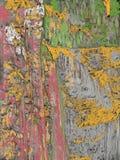 被绘的岩石 免版税库存图片