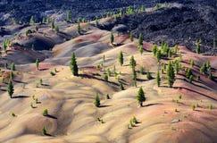 被绘的沙丘 库存照片