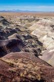 被绘的沙漠 免版税图库摄影