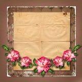 被绘的美丽上升了与祝贺的框架 免版税库存照片