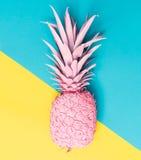 被绘的菠萝 免版税库存图片