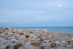 被击碎的壳和石头在一月出期间在一个海滩在黄昏 库存图片