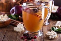被仔细考虑的苹果汁用小的曲奇饼 图库摄影