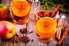 被仔细考虑的苹果汁用桂香和美洲黑杜鹃在玻璃杯子 图库摄影