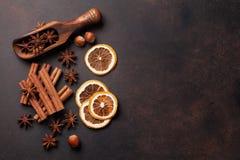 被仔细考虑的酒成份香料 茴香、桂香和豆蔻果实 免版税库存图片