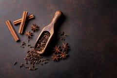 被仔细考虑的酒成份香料 茴香,桂香,豆蔻果实 免版税图库摄影