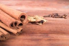 被仔细考虑的酒肉桂条成份  在桂香的焦点 库存图片