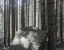 被刻记的岩石 免版税库存图片