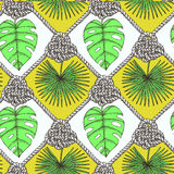 被刻记的棕榈叶和绳索 库存图片