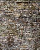 被仿造的纹理混凝土用跑在它的水 库存照片