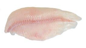 被去骨切片的鲶鱼 免版税库存图片