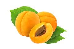 裁减和整个杏子与叶子隔绝与裁减路线 免版税库存照片