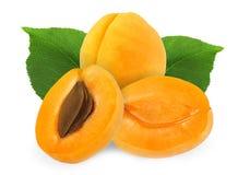 裁减和整个杏子与在白色背景隔绝的叶子 库存图片