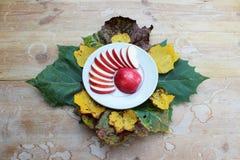 裁减红色苹果的安排在一个土气白色碗的 库存照片