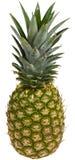 裁减路线菠萝 库存图片