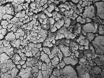 裂化的土壤 免版税库存照片