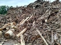 裂片的废木料 免版税库存照片
