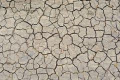 破裂的土壤在干燥期间 库存图片