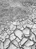 破裂的土壤地面 库存图片