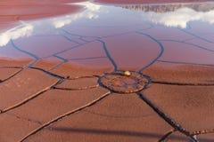 破裂的土壤纹理和水 图库摄影
