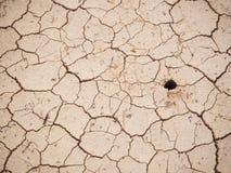 破裂的土壤纹理 免版税图库摄影