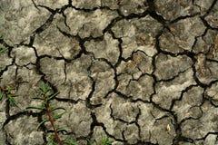 破裂的土壤 库存图片
