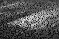 破裂的土壤 免版税库存图片
