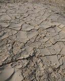 破裂的土壤 库存照片