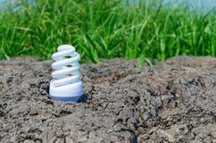 破裂的地球上的Eco电灯泡与绿草 免版税库存图片