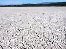 破裂的地球由于天旱在不列颠哥伦比亚省,加拿大的原野 免版税图库摄影
