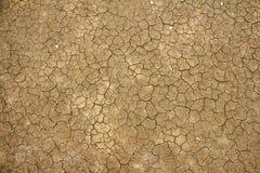 破裂的干燥地球纹理 图库摄影