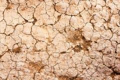 破裂的干燥地球纹理 库存照片