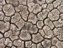 破裂的干燥地球纹理 免版税库存图片