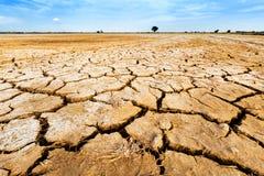 破裂的干燥陆运 库存图片
