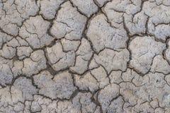 破裂的干燥领域 库存图片