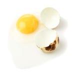 破裂的未加工的鹌鹑蛋用卵黄质被隔绝在白色背景 免版税库存照片