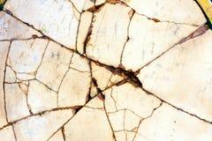 破裂的瓷瓷 免版税库存图片
