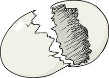 破裂的蛋壳 免版税库存图片