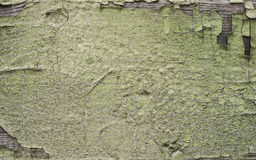 破裂的表面绘了木纹理黄绿色背景 图库摄影