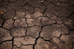 破裂的贫瘠地球或地面 免版税库存图片