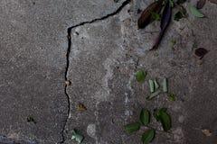 裂缝和叶子的地面 免版税库存图片