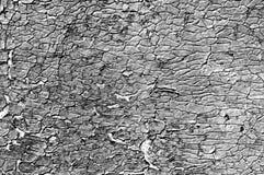 裂缝多密集的老油漆 免版税库存照片