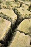 裂缝 库存照片