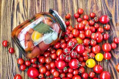 装于罐中的新鲜的蕃茄用在果冻卤汁的葱 菜沙拉为冬天 玻璃瓶子自创鲜美罐装蕃茄克洛 免版税库存照片