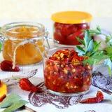 装于罐中的盐土植物家庭菜冬天 从辣椒的宿营用在瓶子的香料 免版税库存照片