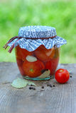 装于罐中的蕃茄 库存图片